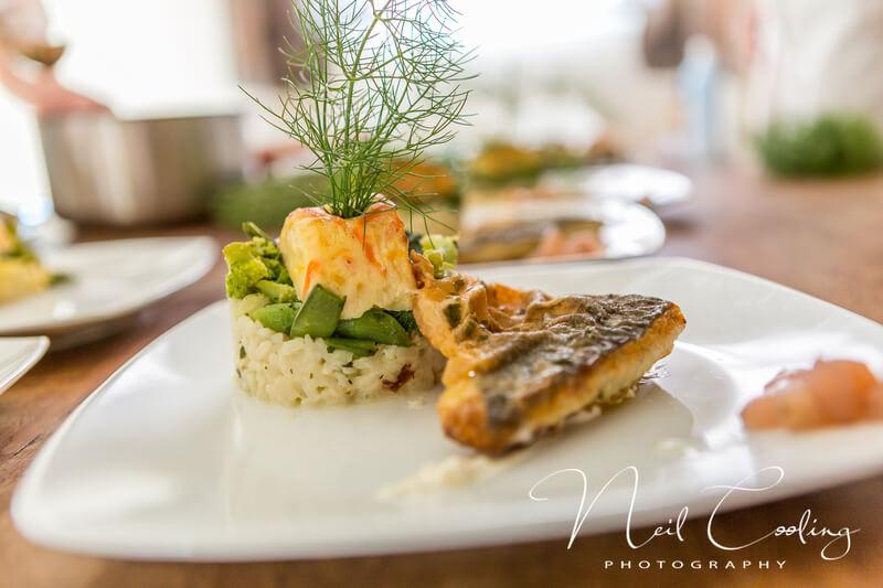 gourmet-dinner-dish